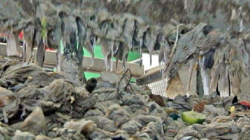 lingettes jetables pollution dans station d'épuration