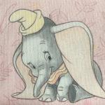Dumbo rose